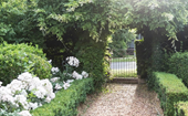 10 easy ways to spring clean your garden