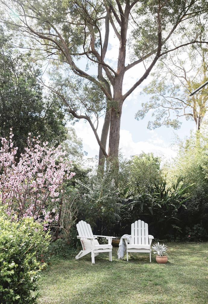 **Backyard** Amber bought the Adirondack chairs online.