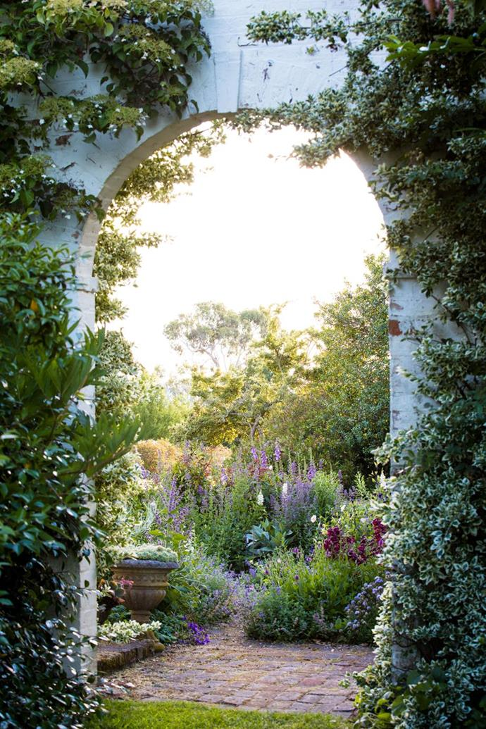 """Variegated Euonymus and climbing hydrangea (Hydrangea petiolaris) adorn this picturesque arch in the [breathtaking gardens of historic Brickendon Estate](https://www.homestolove.com.au/the-breathtaking-gardens-of-historic-brickendon-estate-tasmania-6924