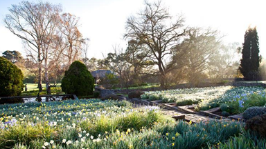 In full bloom: 12 stunning spring gardens