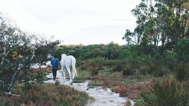 A native plant nursery in Esperance, Western Australia