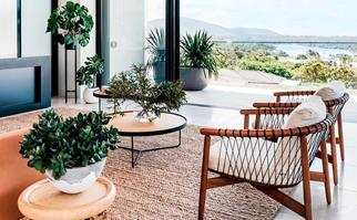 Ways to style indoor plants