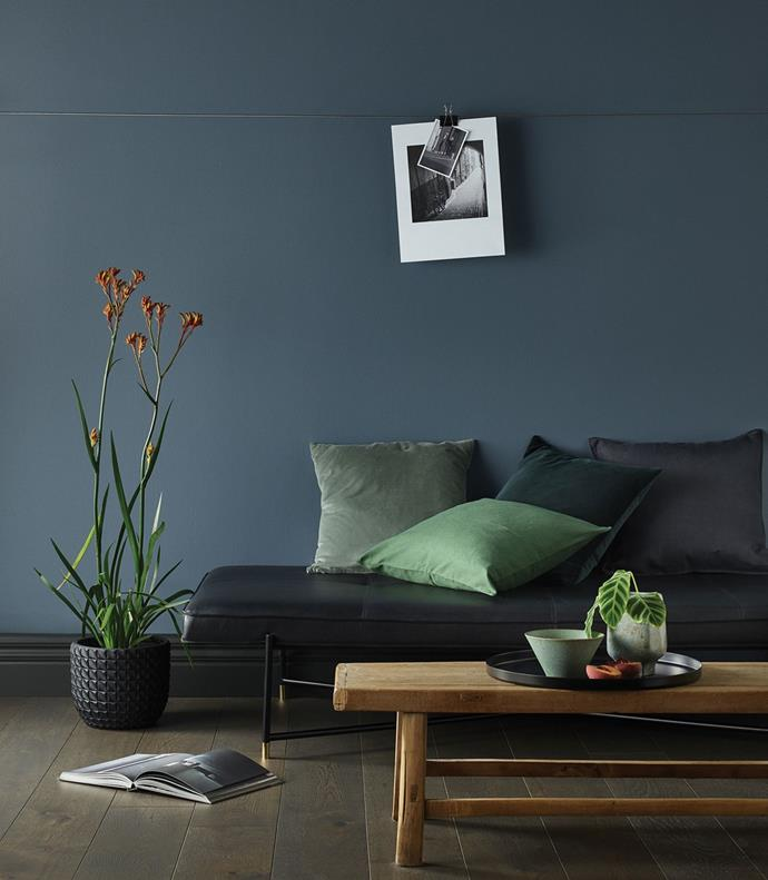 Colour Gunmetal Grey by Porter's Paints is an intriguing greyed-off slate blue with subtle undertones of green.