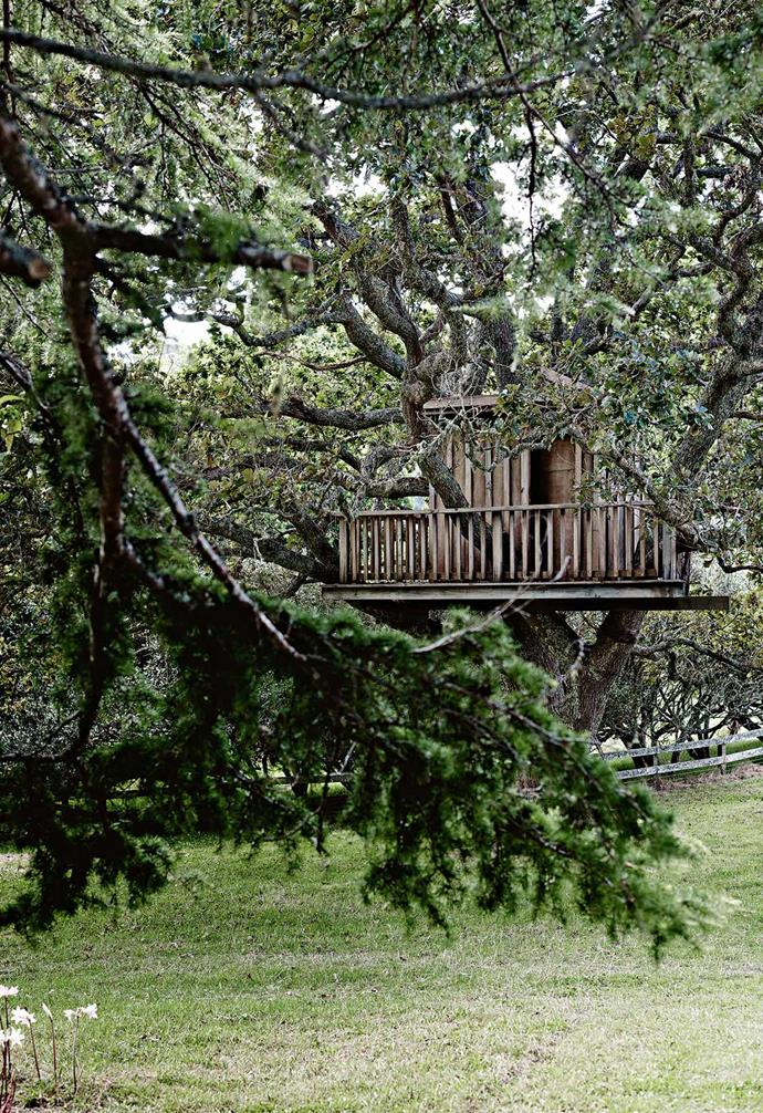 """A [cosy timber farmhouse in New Zealand](https://www.homestolove.com.au/contemporary-timber-farmhouse-in-new-zealand-13767
