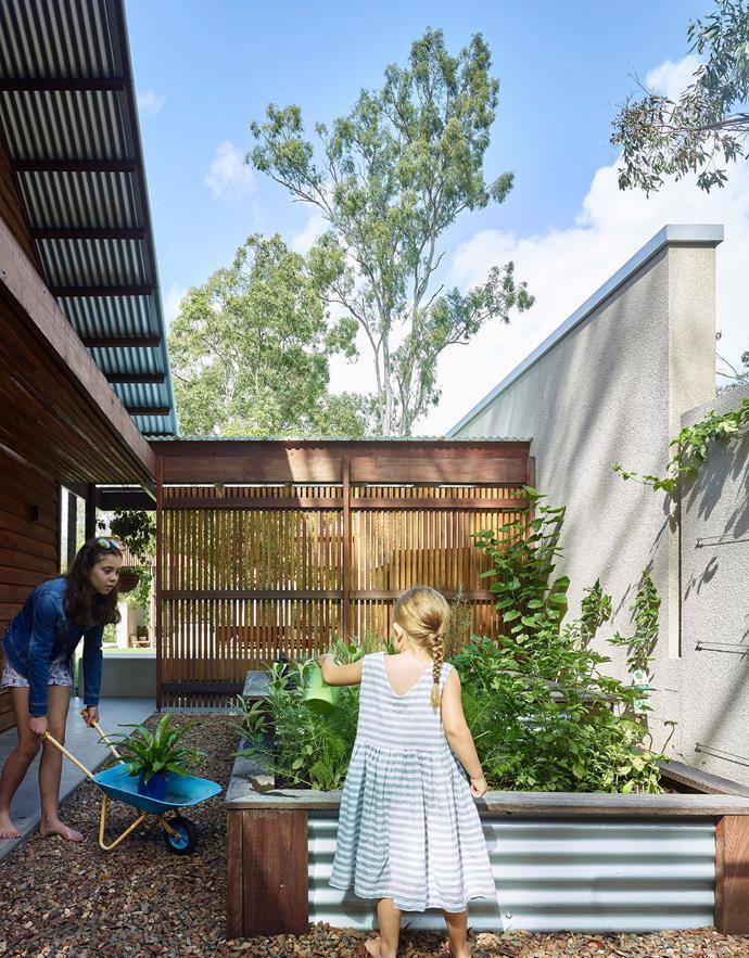 ">> [How to create raised garden beds](https://www.homestolove.com.au/raised-garden-beds-9873 target=""_blank"")."