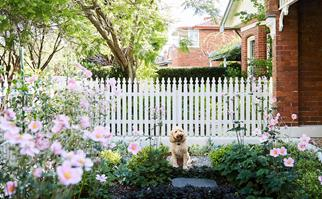 10 spring gardening jobs that will add value to your home