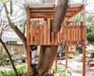 5 tips for adding a treehouse to your backyard