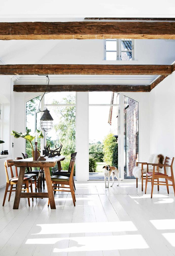 "**Dining area** Sokke the dog wanders through the light-filled heart of Bente and Lutz's idyllic [farmhouse](https://www.homestolove.com.au/farmhouse-restoration-20815|target=""_blank"") on an island in southern Denmark. The chairs were all found at a local flea market. [Natural light](https://www.homestolove.com.au/how-to-increase-natural-light-in-home-15836