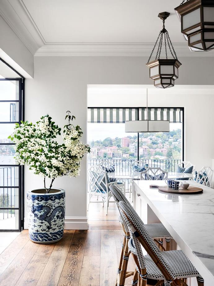 "A potted bougainvillea steals the show in a [Spanish mission style home in Sydney](https://www.homestolove.com.au/a-spanish-mission-style-homes-hollywood-glamour-update-6677|target=""_blank""). Photo: Anson Smart 