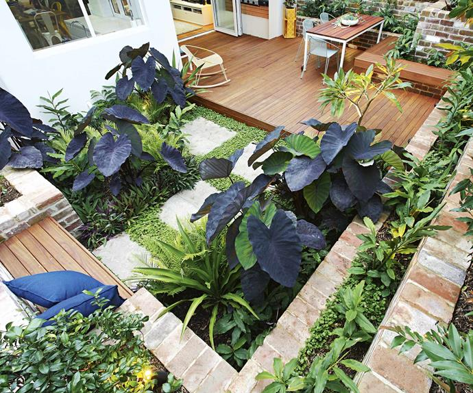 A clever outdoor area designed for non-gardeners