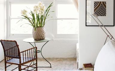 7 flowering indoor plants to brighten your home