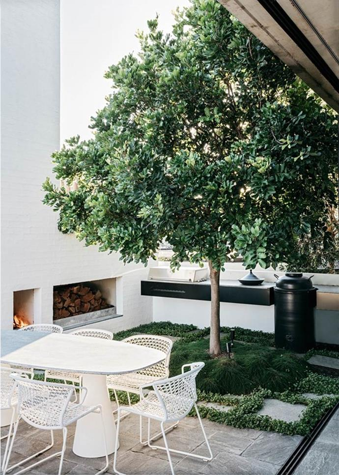 "This [rooftop garden in Sydney](https://www.homestolove.com.au/a-rooftop-sydney-apartment-and-garden-5877|target=""_blank"") features a custom barbecue, tandoor oven and an evergreen tuckeroo tree as a focal point, with stone pavers turning the place into the perfect entertaining space."