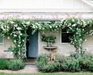 A magical meadow-style garden in Trentham, Victoria