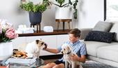 4 ways to manage allergies when you live with pets