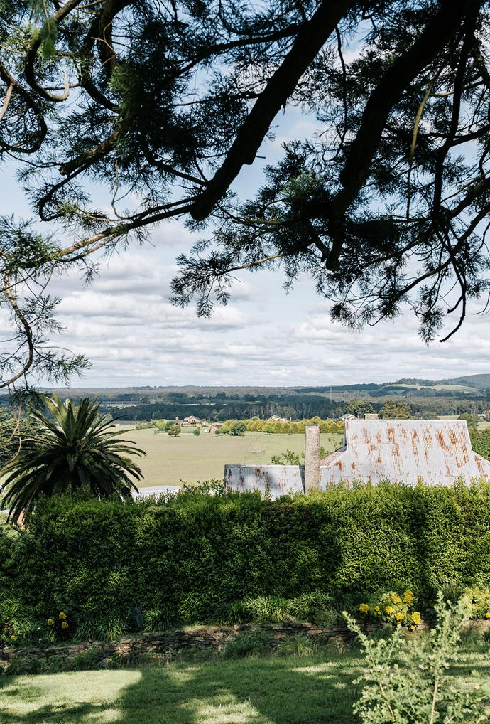 Looking across Hightor from the botanical gardens towards the town of Trentham. The hedge that screens the house runs the length of the property.