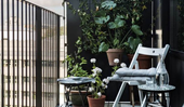 How to create a lush balcony garden