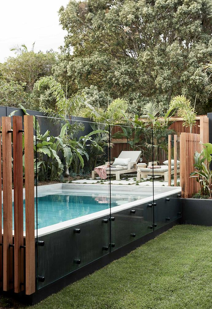 """Surrounded by lush tropical plantings, the pool of this [Byron Bay holiday home](https://www.homestolove.com.au/barefoot-bay-villa-byron-bay-21018