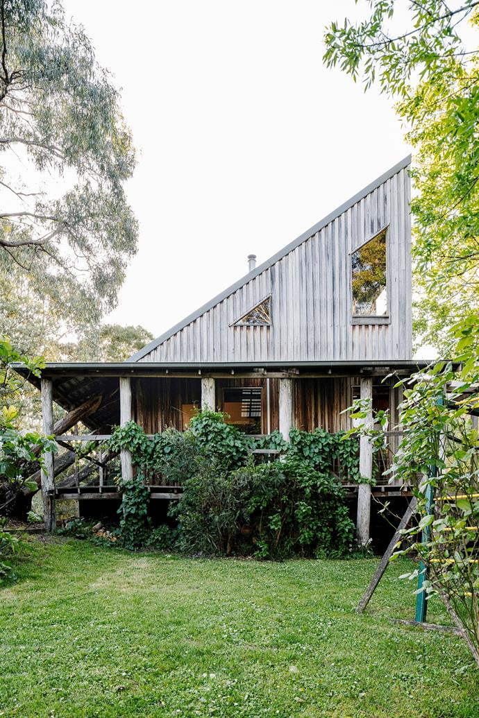 Fleur and Mike wanted a tranquil home surrounded by bushland and abundant greenery.