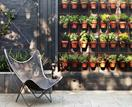 10 gardening trends expected to grow in 2021