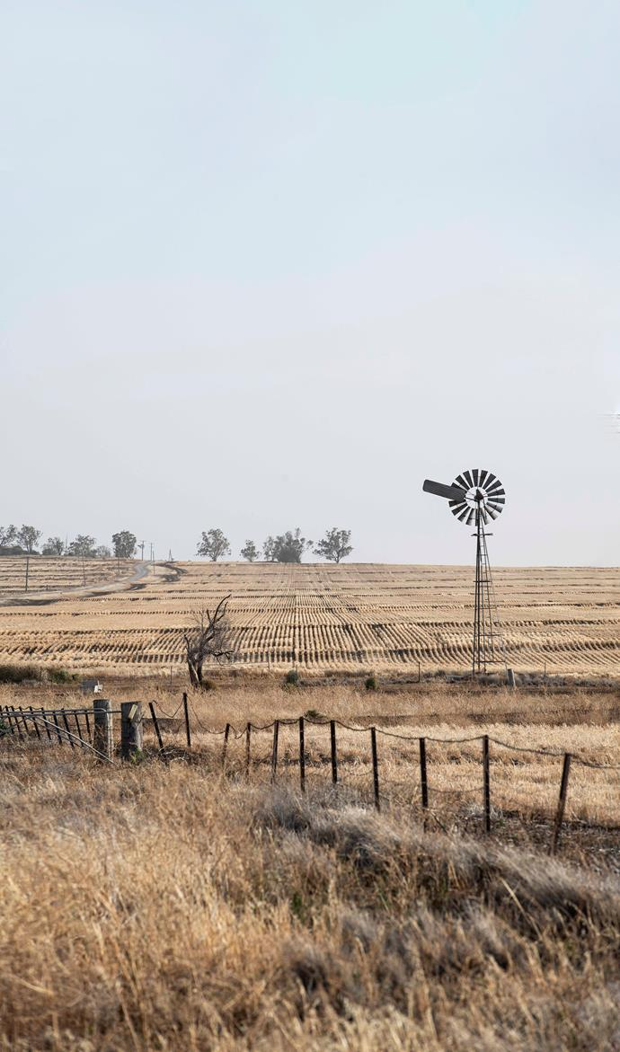 Narrabri faced terrible drought, but is currently much greener.