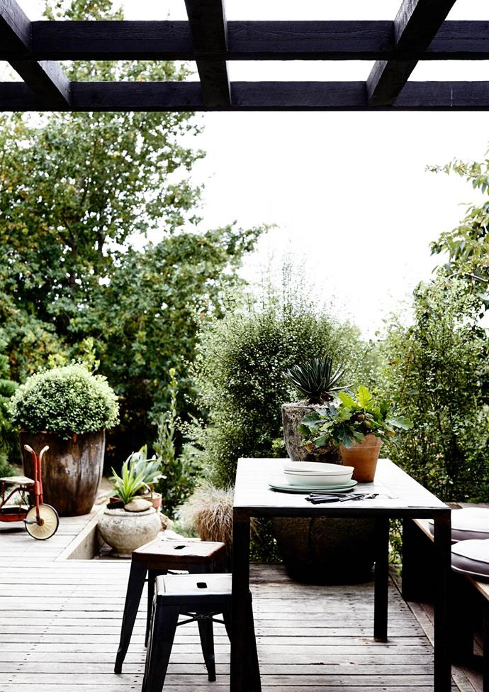 """A dark timber pergola makes for a stunning contrast against the greenery of this chic [country retreat's](https://www.homestolove.com.au/interior-designer-capitalises-on-cottage-charm-2636