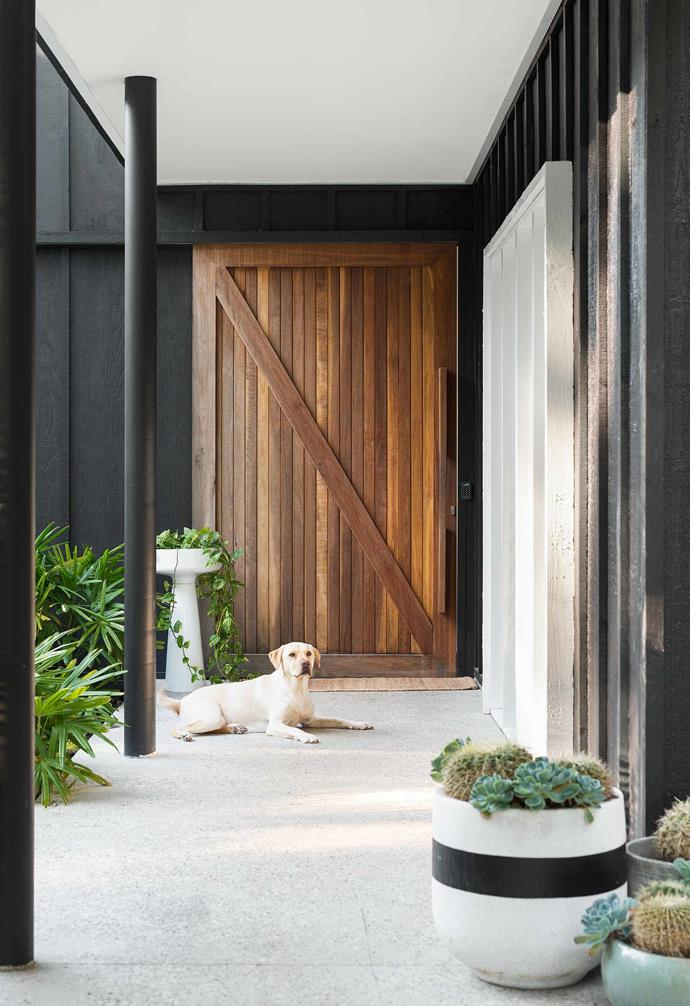"""**Entry** The rough-sawn black-timber exterior was inspired by [Rodd & Gunn](https://www.roddandgunn.com/
