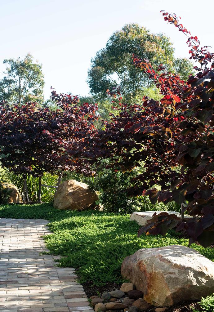 **Landscaping** The gardens have a mix of bush rock and river pebbles around the paths.