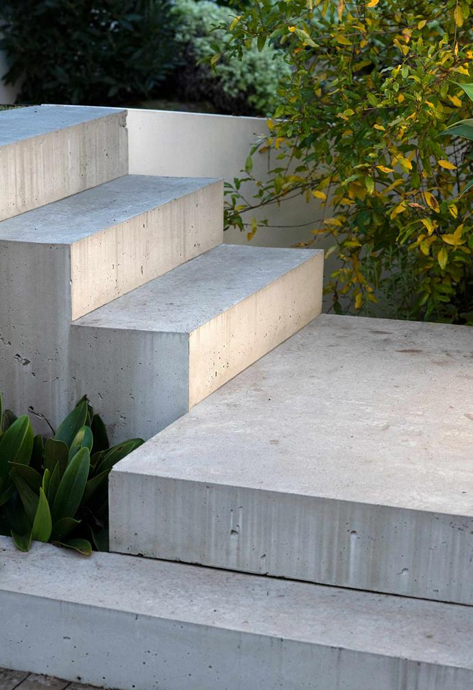 New concrete steps show off the form of structural plants.