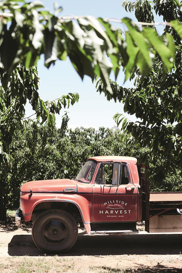The red cherry picking truck.