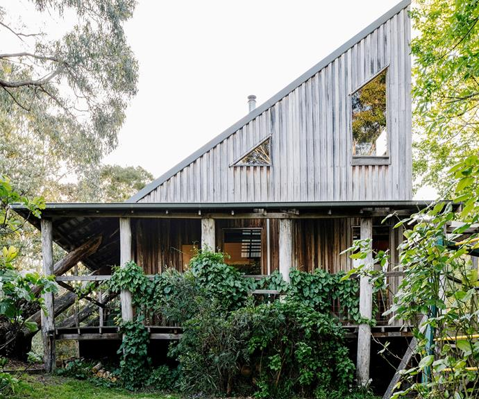 "**[Otways Loft, Forrest, VIC](https://www.stayz.com.au/holiday-rental/p9143843|target=""_blank""