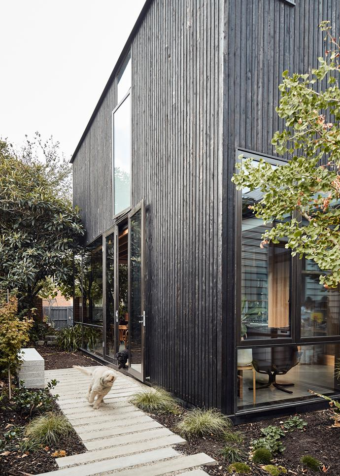 Rough sawn and charred Frencham cypress design Aclad was used for the exterior of the extension. This tactile material works in harmony with the leafy backyard.