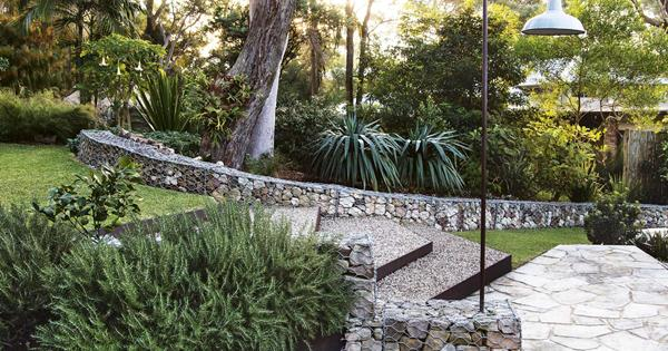 A texturally layered coastal garden filled with native plants
