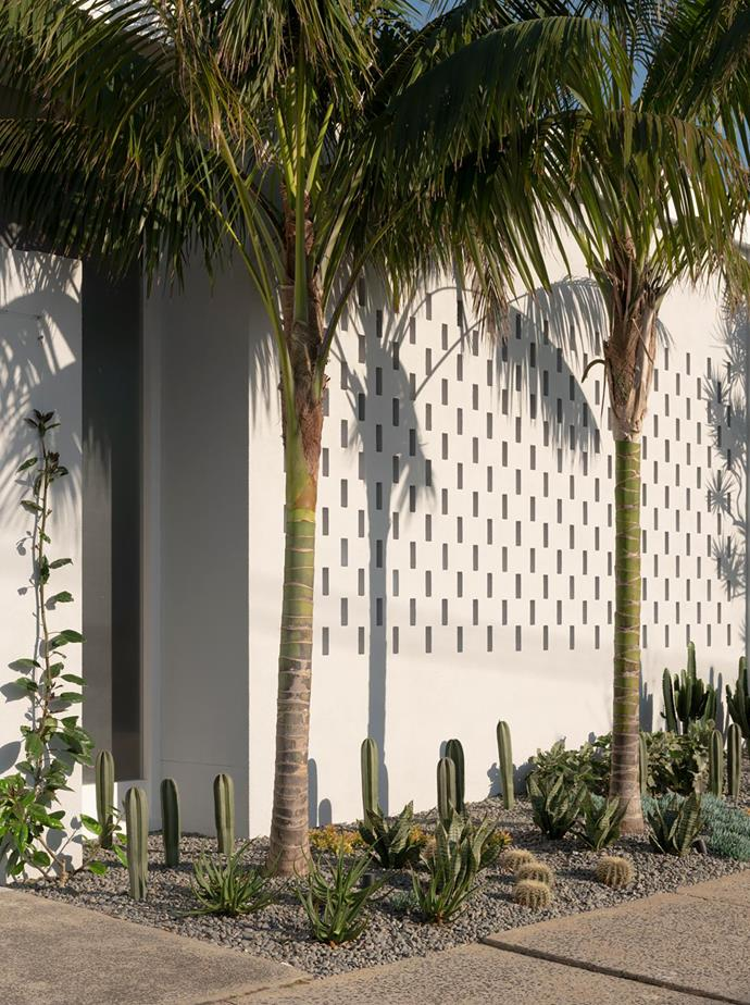 The cactus and palm tree garden forms shadow silhouettes on the breeze-block exterior. 'Musk' pink tiles from Surface Gallery.