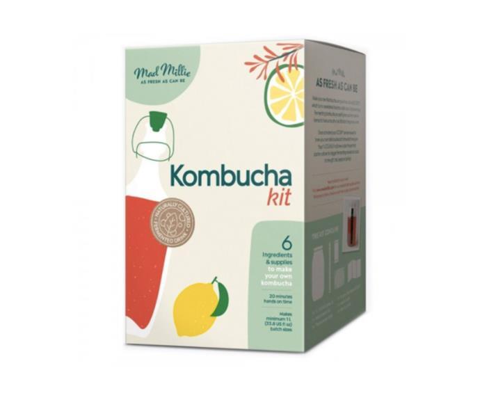 """Mad Millie Kombucha Kit, $46.95, [Biome](https://www.biome.com.au/kombucha/24502-mad-millie-kombucha-kit.html target=""""_blank"""" rel=""""nofollow"""")"""