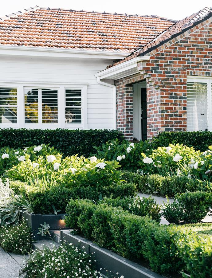 Hydrangeas burst into life each spring in this Melbourne garden by landscape designer Inge Jabara. Bluestone pathways are flanked by lovely layers of Portuguese laurel, English box, lamb's ears, German iris and seaside daisies.