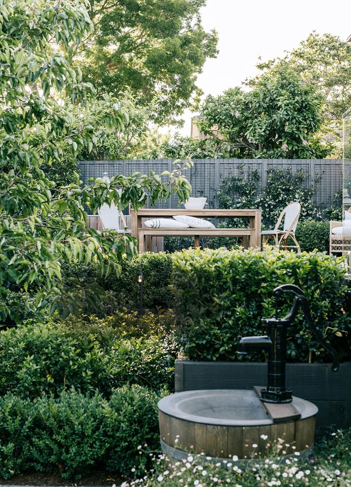 Pyrus calleryana 'Aristocrat' frames this view of the rear deck while Chinese star jasmine climbs the fence. Outdoor furniture from Provincial Home Living.