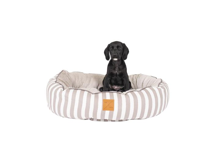 """Mog & Bone 4 Seasons Circular Dog Bed in Latte Hamptons, from $64.95, [Pet House Superstore](https://www.pethouse.com.au/mog-bone-4-seasons-reversible-circular-dog-bed-latte-hamptons-stripe