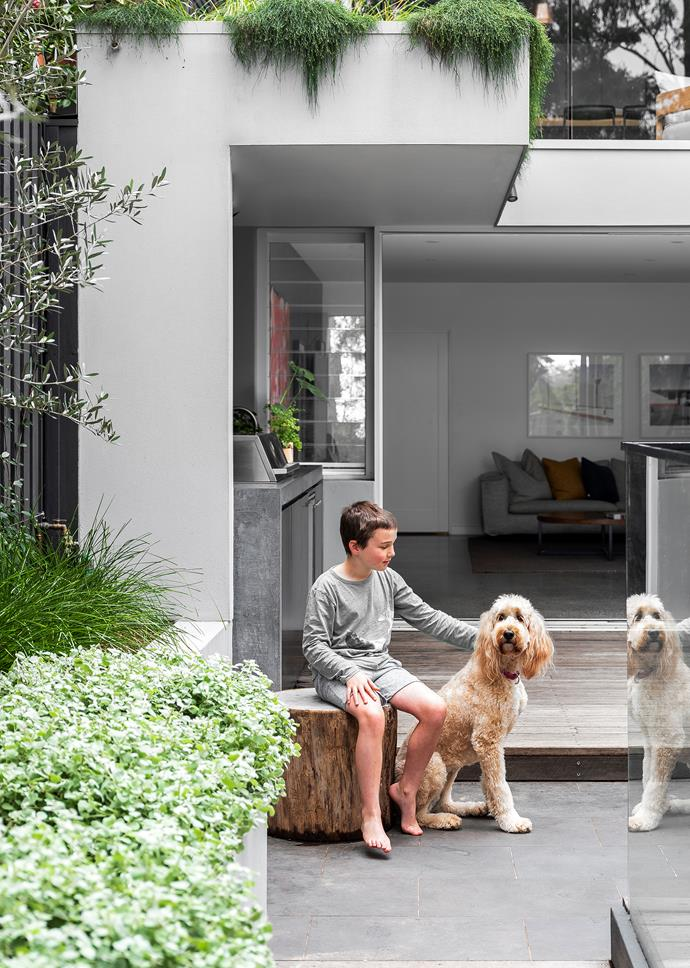 Interior designer and homeowner Annie Bowen looks out from the living room balcony. Pictured opposite is Annie's son Billy, 10, with the family's groodle, Biscuit.