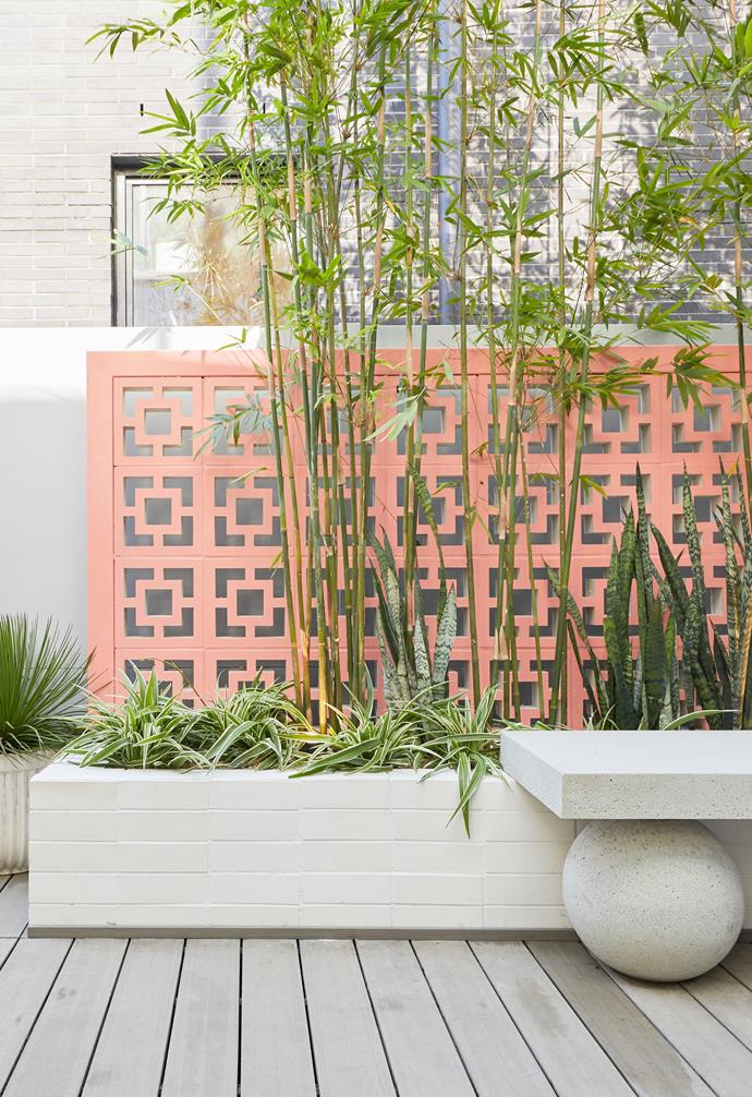 **[Week 12, Backyard and Pool Week](https://www.homestolove.com.au/the-block-2020-backyard-pool-reveals-22011)** Coral breeze blocks were a colourful addition to Jimmy and Tam's courtyard space with Shaynna remarking that the bright pop of colour finally helped to tie their notorious peach bathroom in with the rest of the house.