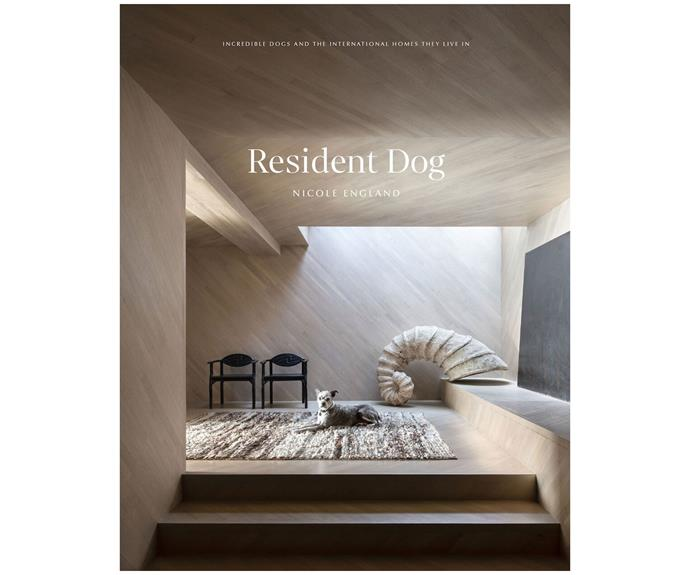 "Resident Dog, $60, [Booktopia](https://www.booktopia.com.au/resident-dog-volume-2-nicole-england/book/9781784883508.html|target=""_blank""