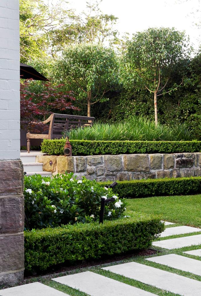 """[>Discover the top 5 plants for hedging](http://www.homestolove.com.au/the-best-plants-for-creating-a-hedge-4163 target=""""_blank"""")."""