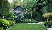 How to declutter your garden
