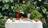20 polished party season essentials