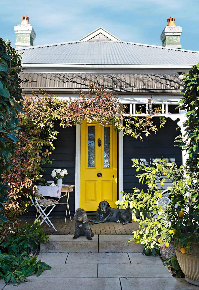 "There's no greater way to up your home's kerb appeal than by adding in a colourful front door. This [weatherboard cottage in Bowral](https://www.homestolove.com.au/weatherboard-cottage-in-bowral-13647|target=""_blank"") features a vibrant yellow door paired with a dark exterior and white trims."