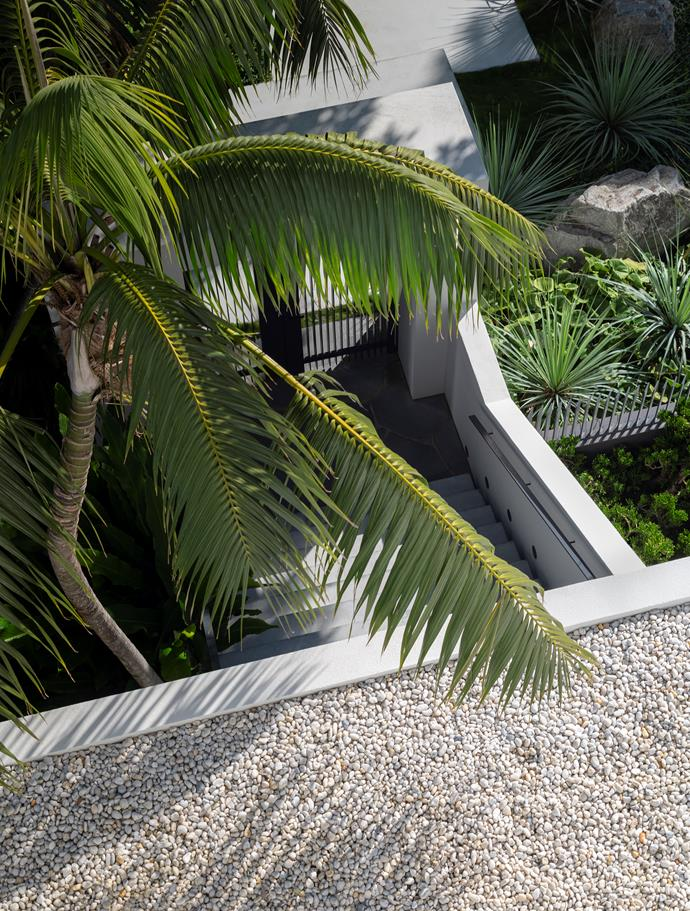 Looking down from the upstairs towards the entry, aggregate softens the built form and is a neat counterpoint to the fronds of one of several palms framing the staircase.