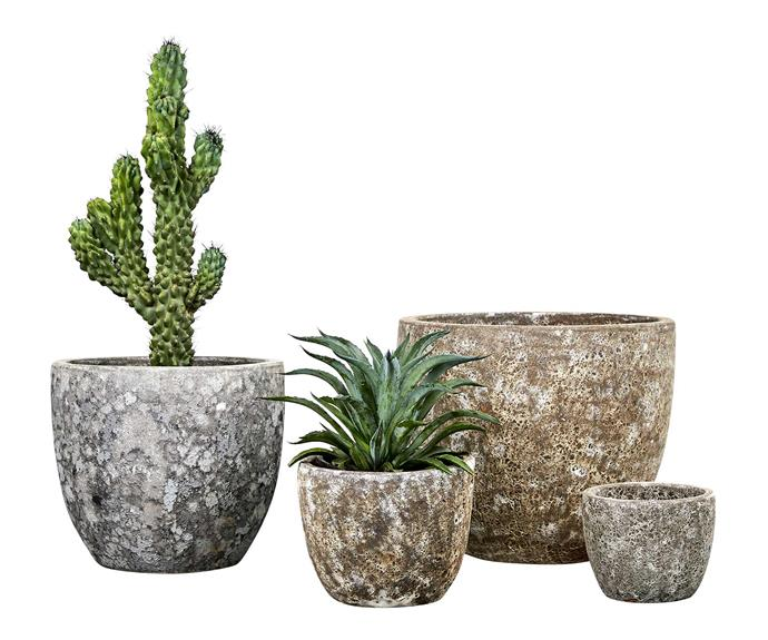 "Triton egg pots, from $55 each, [Garden Life](https://gardenlife.com.au/|target=""_blank""|rel=""nofollow"")."