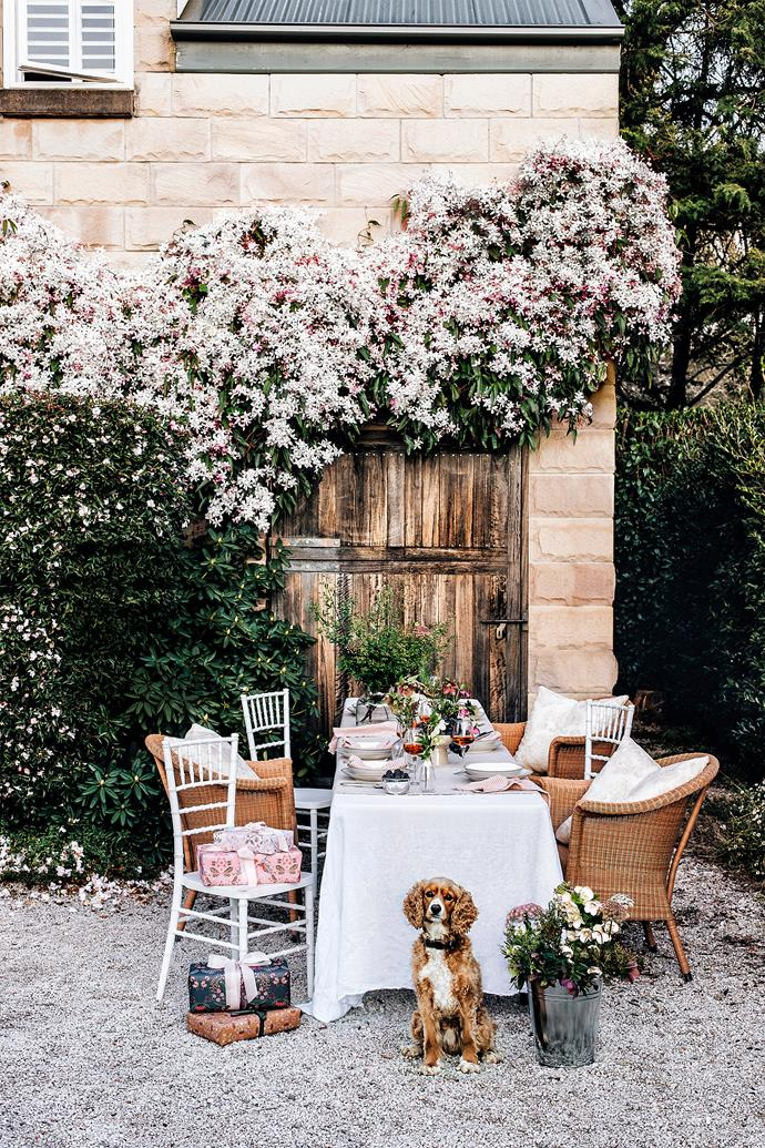 Melissa Penfold loves to host Christmas and if it is a lovely day she and her family eat outside under the clematis.