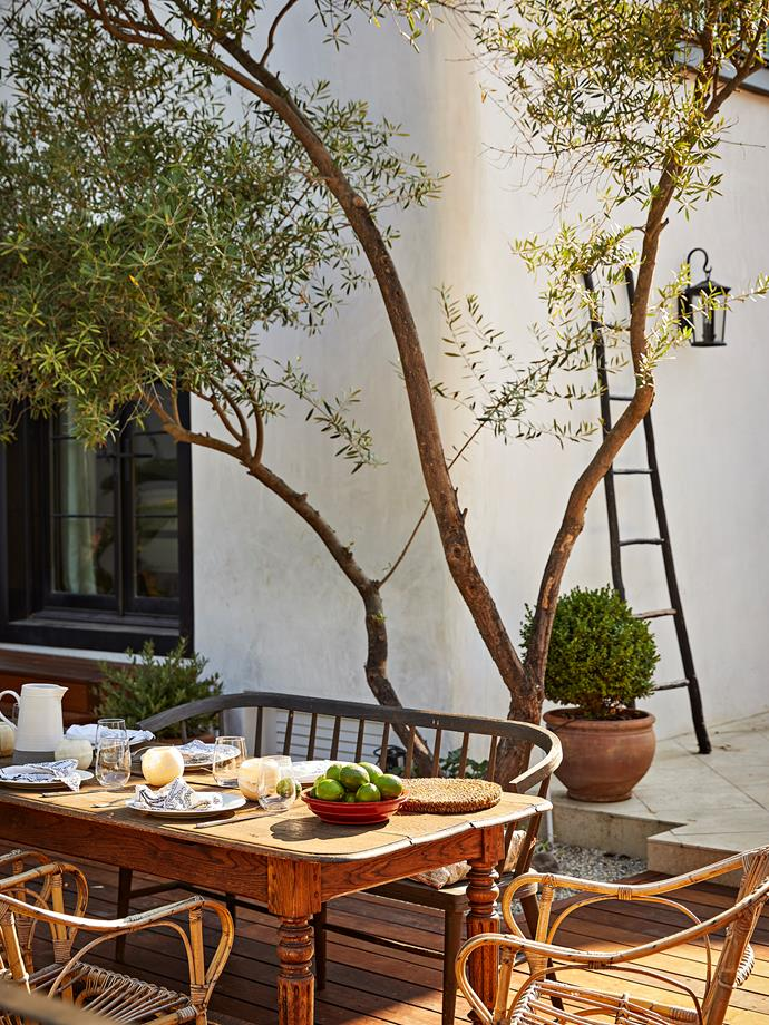 Dining on the outdoor terrace overlooking the pool is a favourite spot for the couple. The olive tree was imported fully grown. The farmhouse table is a vintage piece from Belgium.