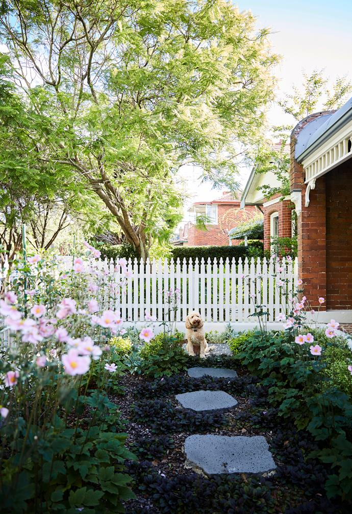 ">> [25 small garden design ideas](https://www.homestolove.com.au/25-small-garden-design-ideas-6659|target=""_blank"")."