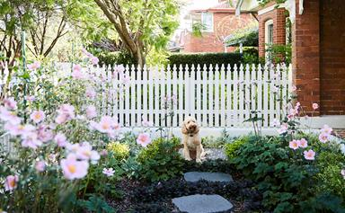 February garden planner: the essential checklist for your backyard